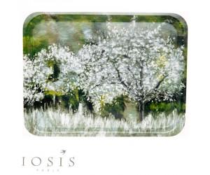 Iosis Tablett Saison prairie