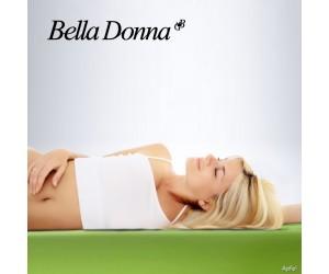 Formesse Spannbettlaken Bella Donna Jersey apfel